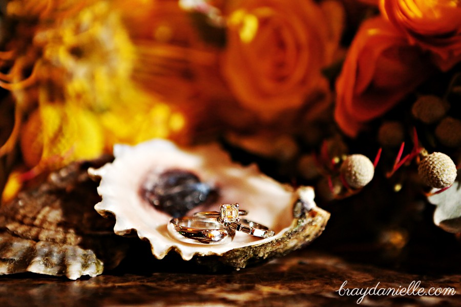 Close up of wedding rings oyster shells