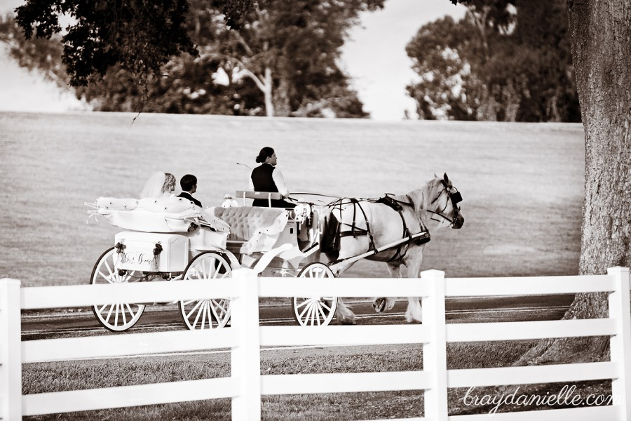 Bride and groom riding away in a carriage